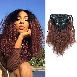 Sassina Ombre Afro Curly Clip In Human Hair Extensions Double Wefts Remi Hair For Black Women Natural Black Fading into Auburn 120 Grams-Set With 7 Pieces 17 Clips AC TN33 12 Inch