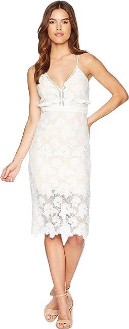 Bardot Vienna Dress