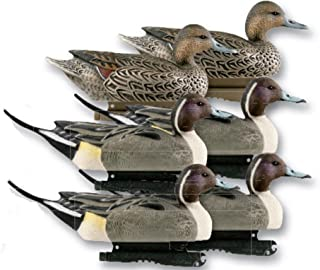 Avery Greenhead Gear Life-Size Duck Decoy,Pintails,1/2 Dozen