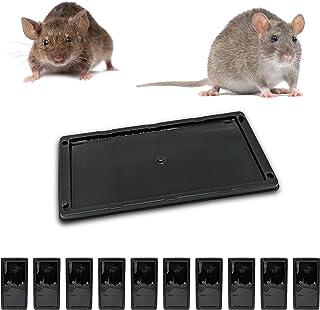Muispiek met rattenlijm, tegen knaagdieren, dood voor ratten, krachtig, alternatief voor ratten, tegen ratten, ratten, mui...
