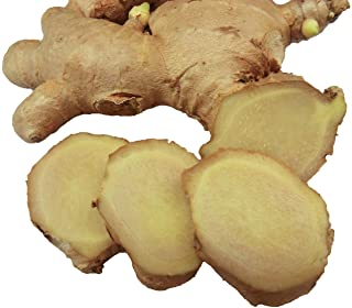 Fresh Ginger Root - 1lb