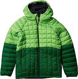 Green Mamba/True Green