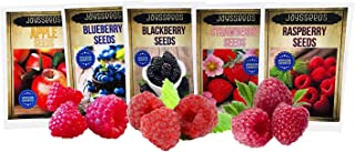 Fruit Combo Pack Raspberry, BlackBerry, Blueberry, Strawberry, Apple, Huckleberry 1075+ Seeds +2 Plant Markers & 3 Free Packs of Raspberry Seeds