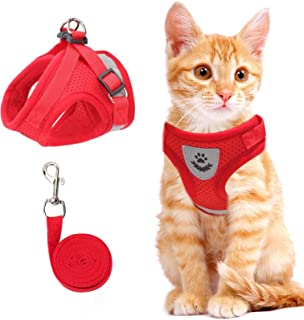 Cat Vest Harness and Small Dog Vest Harness for Walking, All Weather Mesh Harness, Cat Vest Harness with Reflective Strap,...