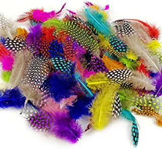 JPSOR 120pcs 3-6 Inches Colorful Spotted Feathers for DIY Craft, Jewelry and Clothing Decoration, 10 Colors