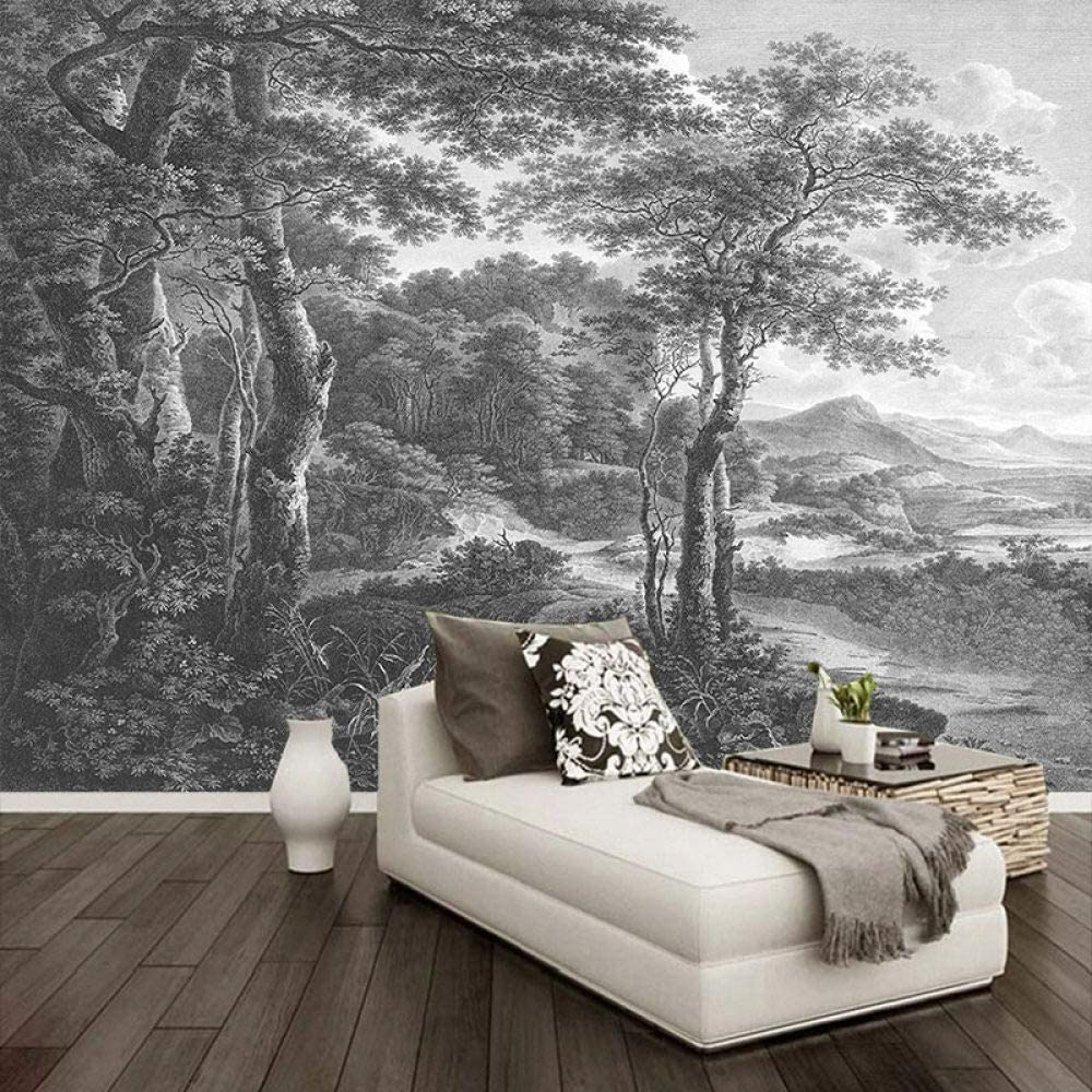 SKYROPNG Wall Mural Wallpaper Retro Hand For Selling and selling Black Painted White Direct store