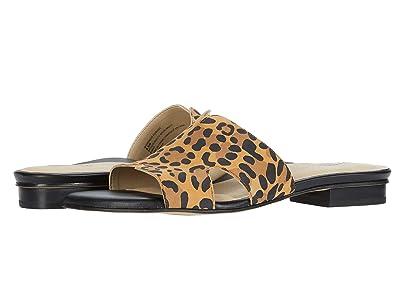 Earth Mykonos Torlos (Brown Multi Silky Suede Leopard Print) Women