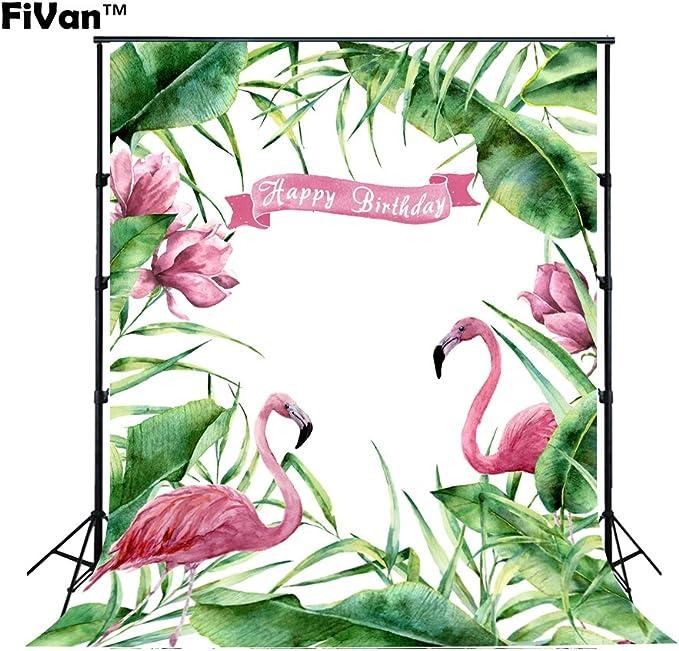 Fivan Cartoon Foto Hintergründe Für Geburtstag Dessert Kamera