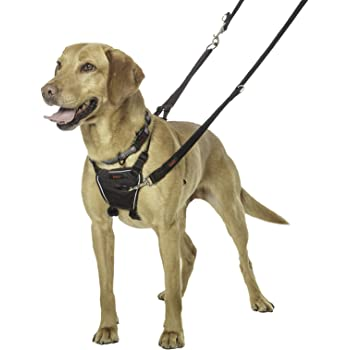 Halti Dog Harness, No Pull Harness for Medium Dogs, Stop Dog Pulling on Walks with Halti Dog Harnesses, for Medium Dogs