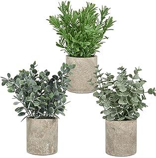 YQing 3 Pièces Mini Pot en Plastique Plante, Plantes Artificielles en Pot Plastique Eucalyptus dans un Pot pour la Maison,...