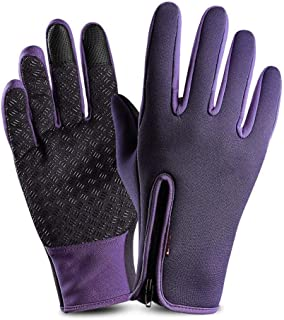 JCCOZ Touch Screen Gloves Outdoor Riding Gloves Zipper Sports Warm Plus Velvet Mountaineering Ski Gloves (Color : Purple, Size : L)