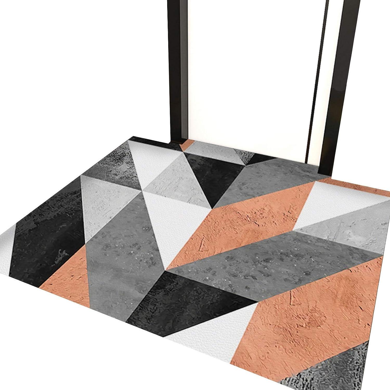 WZHIJUN Indoor Doormat Mail order cheap Non-Slip Waterproof Ranking TOP1 Carpet Before Rear En
