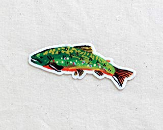 Brook Trout Fish Animal Sticker - Waterproof Vinyl Sticker - Adventure Sticker - Camping and Hiking Gear - Water Bottle Decal - Car Decal