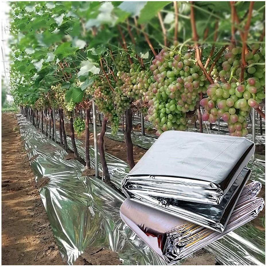 WGD Dimo Greenhouse Agricultural OFFicial Silver Mulch Do Coated Super sale period limited Outdoor