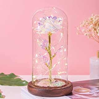 Galaxy Rose Flower Gift-Galaxy Enchanted Rose Led Glass Display Mother-s Day Gifts Form Daughter for Women Grandma Mom Birthday Day Wedding Anniversary Room Home Bedroom Decor