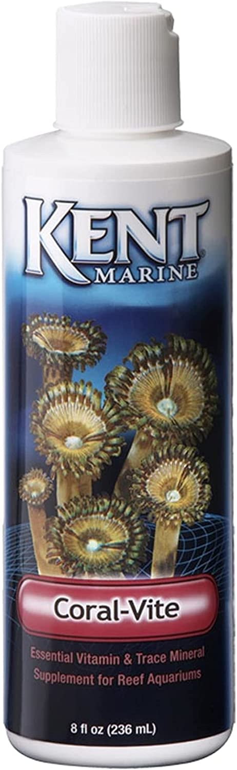 Kent Special Campaign Marine Our shop OFFers the best service Coral-Vite