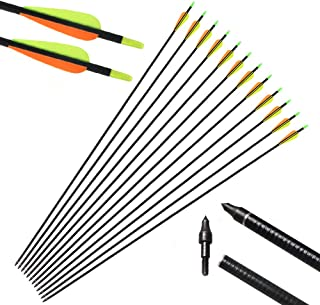 Best refletching carbon arrows Reviews