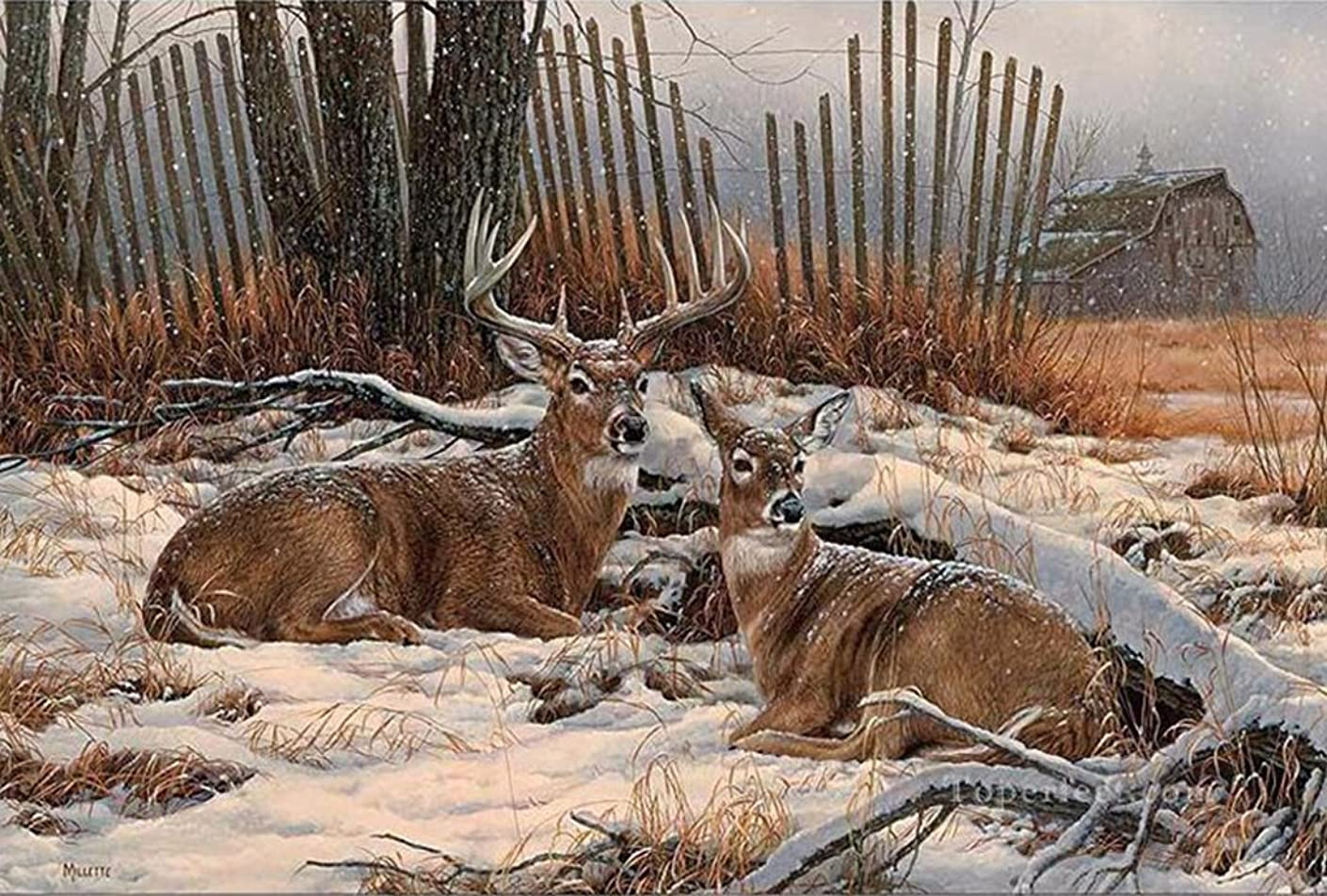 21secret 5D Diamond Diy Painting Full Drill Handmade White Tailed Deer Couple Rest in the Snow Cross Stitch Home Decor Embroidery Kit