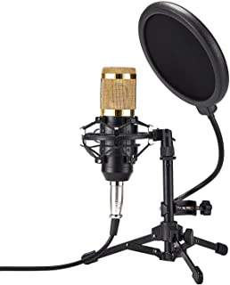ZINGYOU Desktop Microphone Set ZY-801+ Condenser Microphone Professional Studio Cardioid PC Mic Bundle for Studio Recording and Broadcasting (Sunrise Gold)