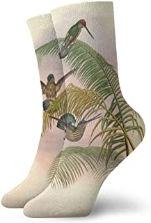 tyui7, Calcetines de compresión antideslizantes coloridos coloridos de la palmera del colibrí Retro Calcetines deportivos acogedores de 30 cm para hombres, mujeres y niños