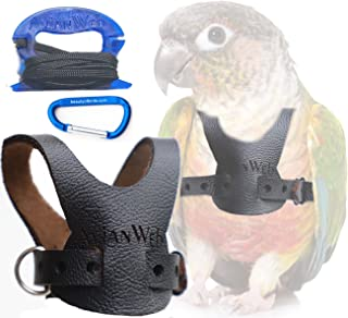 Avianweb EZ Rider Bird Harness with 8 Ft Leash