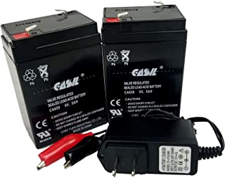 2 Pack 6v 5ah with Charger Casil 650 Battery for Motorcycle & Personal Watercraft