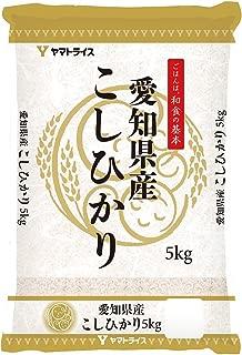 【精米】愛知県産 白米 コシヒカリ 5kg 令和元年産