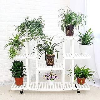 Amazon.es: Winner Home Store - Soportes para plantas / Huertos ...