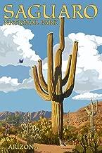 Saguaro National Park, Arizona - Roadrunner and Trail (9x12 Art Print, Wall Decor Travel Poster)