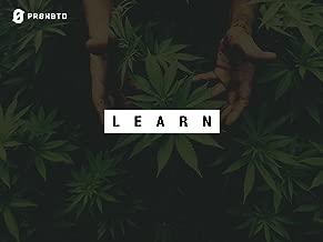 Prohbtd Learn