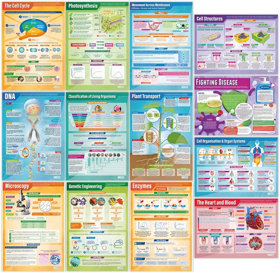 Biology Posters Sales results No. 1 - Set of Gloss Science Paper Meas 13 Under blast sales