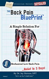 The Back Pain BluePrint: A Simple Solution For Mechanical Low Back Pain (The Dr. Jay Way To Health Series Book 1) (English Edition)