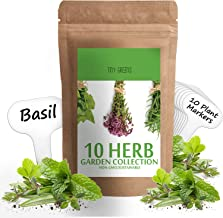 Herb Seeds Vault [10 Variety - 3000 Seeds]- Heirloom Non GMO - Herbs Seeds for Planting for Indoor and Outdoor | Herb Garden Seed Pack | Thyme, Mint, Chives, Dill, Cilantro, Parsley, Basil, Marjoram
