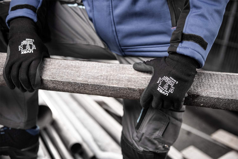Guantes de protecci/ón contra el fr/ío Uvex Unilite Thermo 3 pares, 08//M