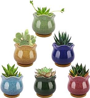 Lewondr Succulent Plant Pots, 3.5 Inch 6 Pack Ice Crack Mini Ceramic Flower Cacti Pot Planter Container Set with Drain Hol...