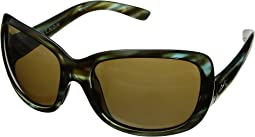 Abalone Ultra Brown 12-Polarized