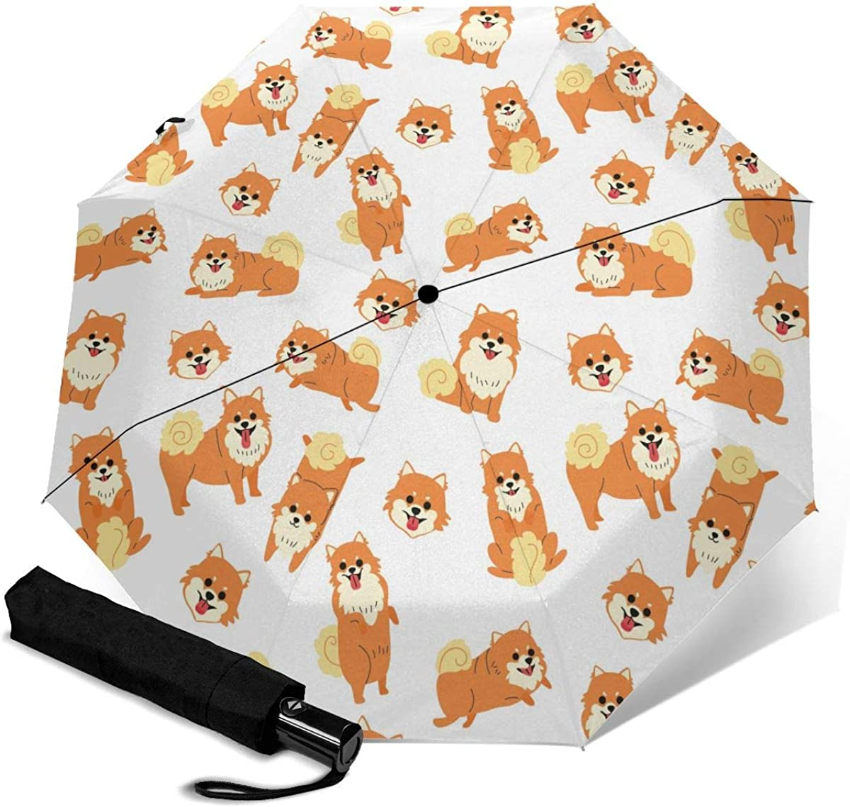 Cute Pomeranian Dog Umbrellas for Auto Excellent New sales Color-Changing rain Umbre
