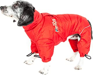 pitbull jackets for people