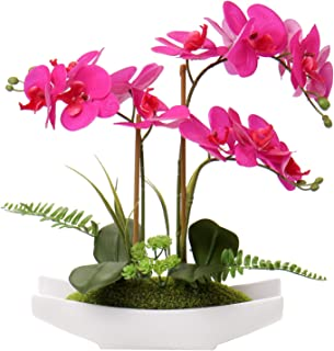 Kazeila Mini Plantas Falsas en Maceta Hotel cafeter/ía decoraci/ón Moderna librer/ía Planta de Serpiente Artificial de 40 cm para Oficina en casa