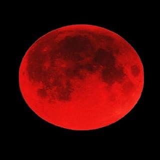 九十九恭介事件録~闇夜に浮かぶ赤い月~