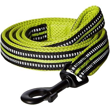 PetsUp Nylon Reflective Leash for Small Medium Large Dogs (Green, 2.5/200 Cm)