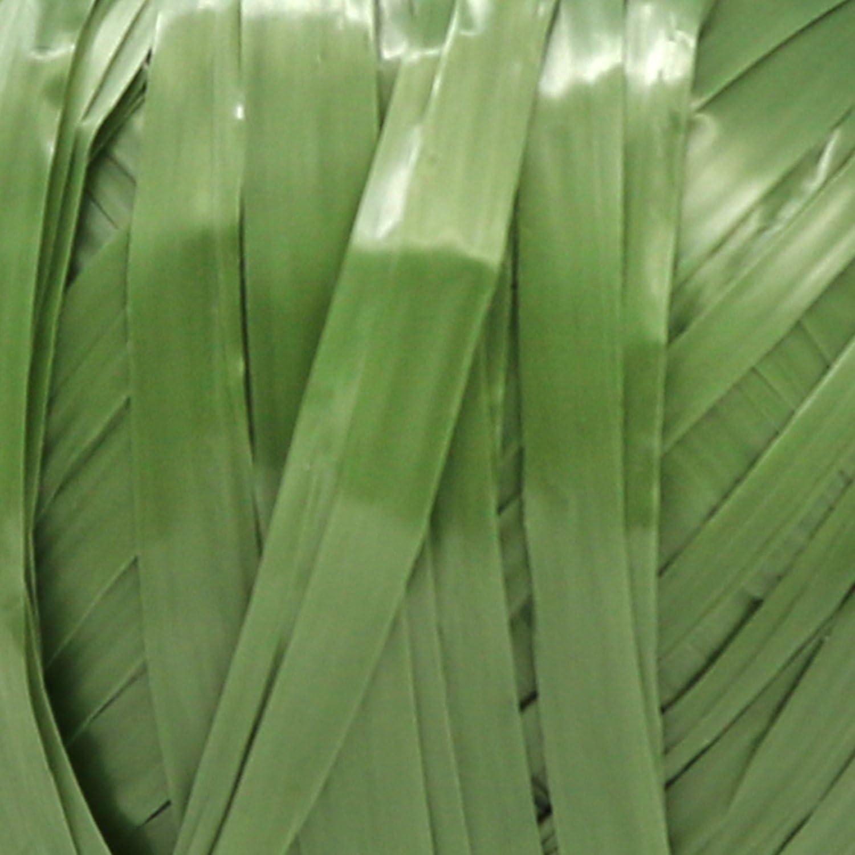 Bastoncino Artigianale in Verde 03 Pezzi - Bast Verde com-four/® 3 Pezzi Set di Raffia Bast Naturale per la Lavorazione e Decorazione