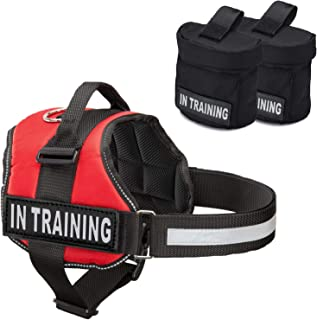 hurtta training vest