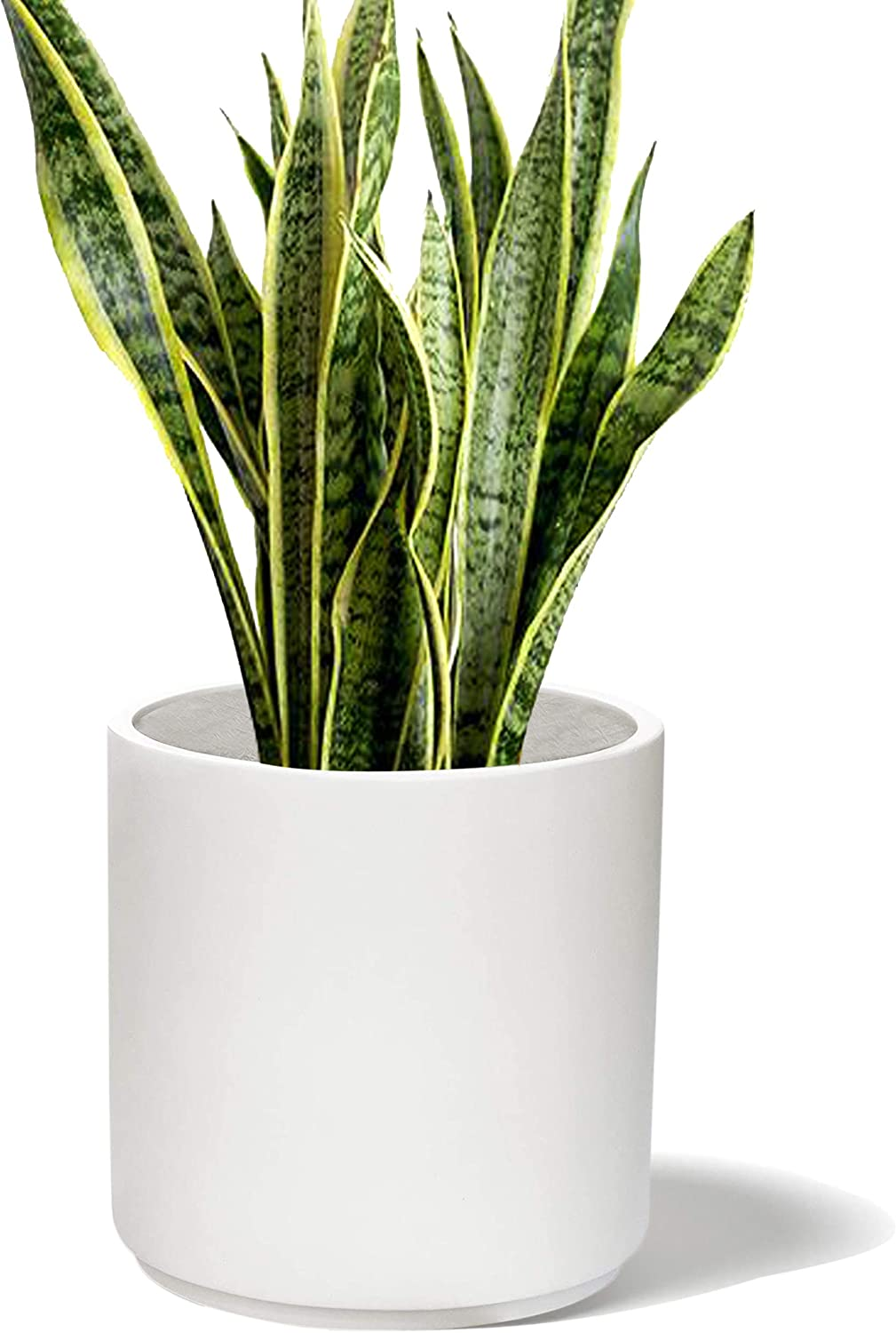 """Elly Décor 10"""" Planter Drainage Hole and Plug   Round Cylinder Pot   Indoors and Outdoors   Fits Mid Century Plant Stand Modern, 10 inch, White"""