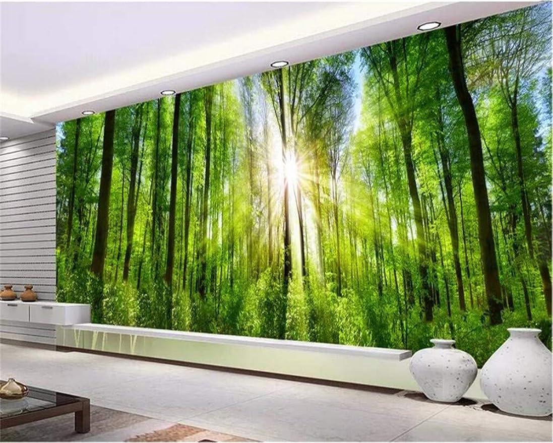 ほとんどない神経障害昼食Weaeo カスタム壁紙の壁画ヨーロッパのプレミア緑の森サンシャインの風景テレビのソファの背景壁画の3D壁紙-450X300Cm