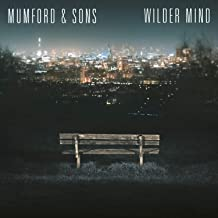 mumford and sons tompkins square park