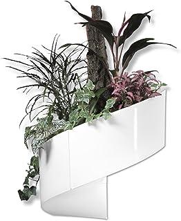 Amazon Fr Tableau Vegetal Pots De Fleurs Contenants Et