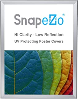 SnapeZo Poster Frame 18x24 Inches, Silver 1.25 Inch Aluminum Profile, Front-Loading Snap Frame, Wall Mounting, Professional Series