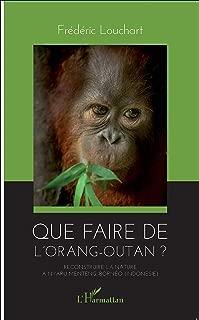 Que faire de l'orang-outan ?: Reconstruire la nature à Nyaru Menteng, Bornéo (Indonésie) (French Edition)