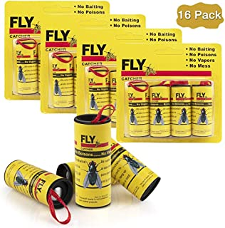 Best flying insect catcher Reviews